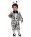 Zebra kostuum voor een baby