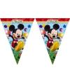 Mickey Mouse vlaggetjeslijn 2,3 meter