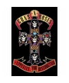 Guns N Roses Appetite maxi poster My Everything 61 x 91 cm