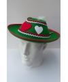 Tiroler hoeden groen voor dames